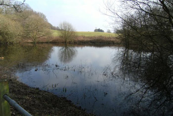 Hevers Pond Work Party – Postponed until January/February