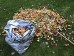 Free leaf mulch bags for Bletchingley residents