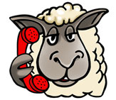 Don't be sheepish about calling Crimestoppers…